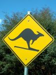 Kangaroo, sign