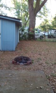 Fire Pit 4-17