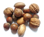 A nut-1569252_1920